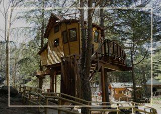Parco Avventura Madonie case sull'albero Italia