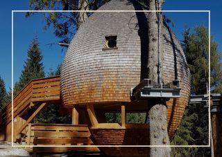 case sull'albero Italia - Malga Priu