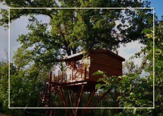 Tenuta Bocchineri case sull'albero in Italia