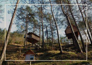 case sull'albero Italia - Tree Village
