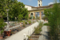 Cosa vedere a Lucca in 10 tappe