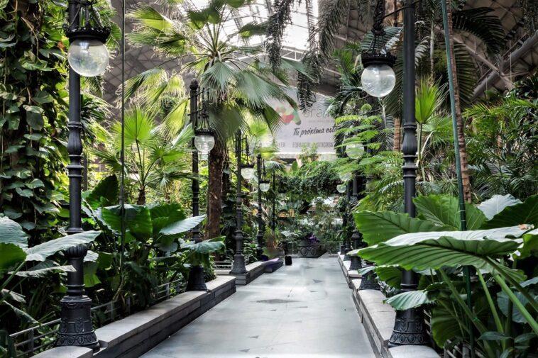 Stazione Atocha a Madrid: un giardino tropicale