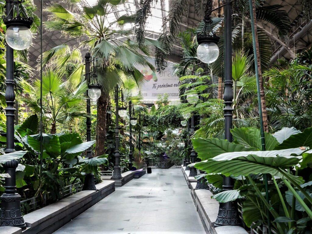 Stazione Atocha di Madrid, la vista del giardino tropicale